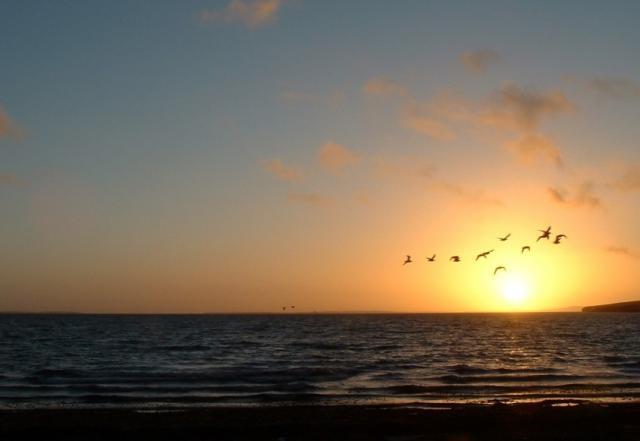 Scapa sunset