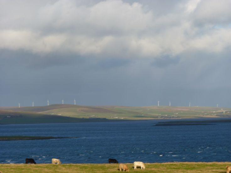 Wind turbines on skyline