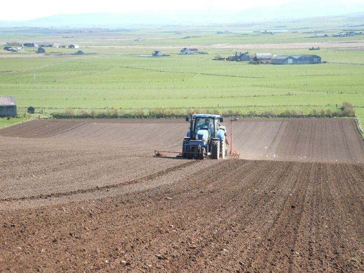 Barley sowing in Spring