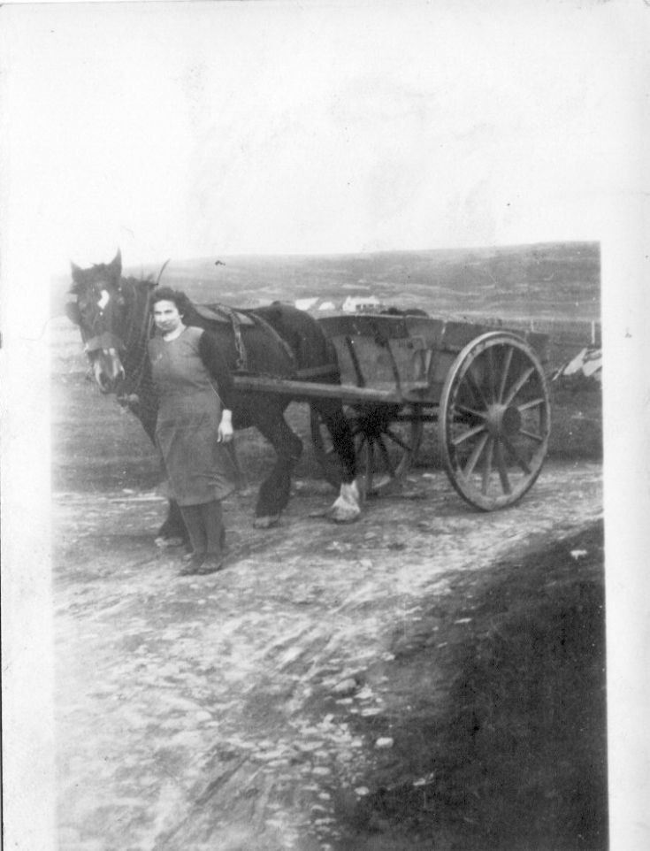 Cecilia Sclater, Kebro, with horse and cart