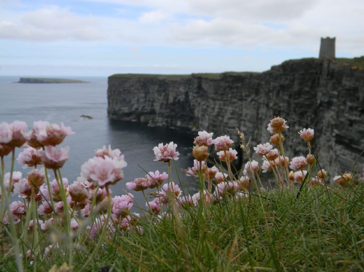 Overlooking Marwick Head 2012